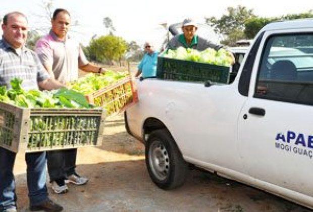 Horta Comunitária faz doação a entidades