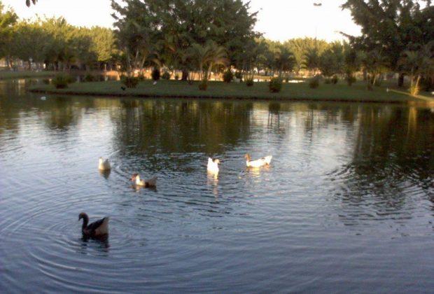 Suspensa a pesca na Lagoa dos Pássaros na segunda, dia 4