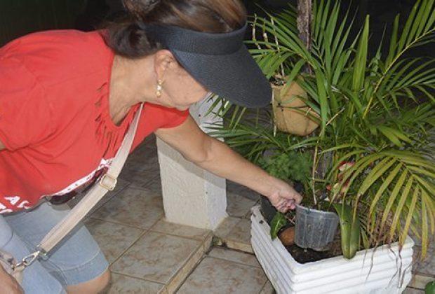 Ações de combate ao Aedes Aegypti são realizadas em Jaguariúna