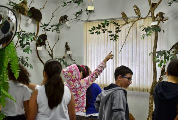 Museu de História Natural estende exposição de animais