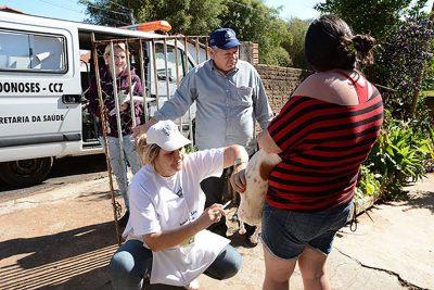 Começa neste sábado, 21, vacinação contra raiva animal em Mogi Guaçu