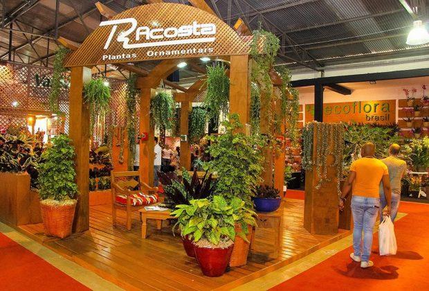 25º Enflor e 13ª Garden Fair começam dia 17, em Holambra