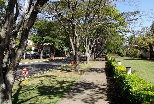 Prefeitura inicia segunda etapa de revitalização da Alameda Mauricio de Nassau