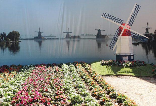 Cartão Cidadão dá passe livre a holambrenses na Expoflora
