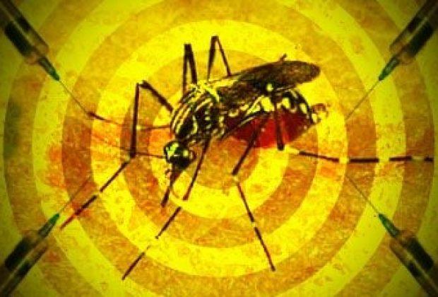 Cidades da região se reúnem para discutir medidas sobre Febre Amarela