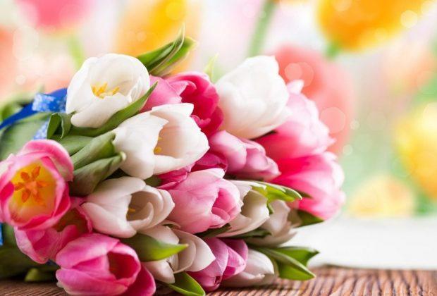 Expectativa de venda de flores é positiva neste Dia Internacional das Mulheres