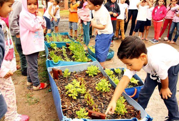 Grande colheita marca encerramento do Projeto Horta Escolar