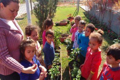 Holambra recebe menção honrosa em iniciativa de educação ambiental