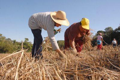 Prefeitura convida produtores rurais para o preenchimento da Dipam