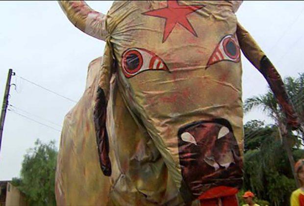 Bloco da Vaca completa 88 anos de paixão e história no Carnaval nogueirense