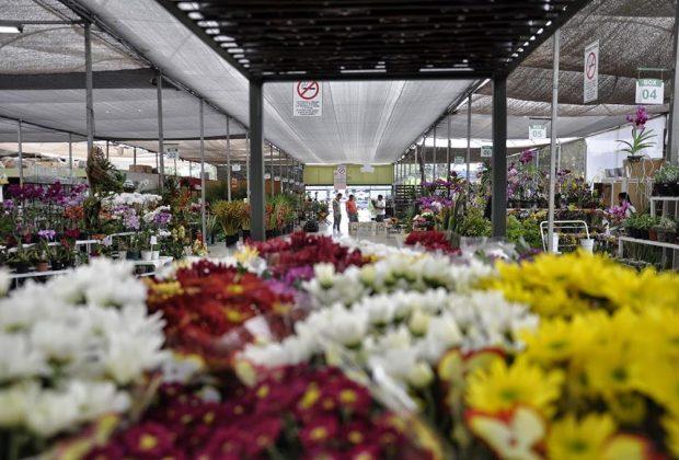 Circuito dasFloresPaulista é sancionado pelo governador Alckmin