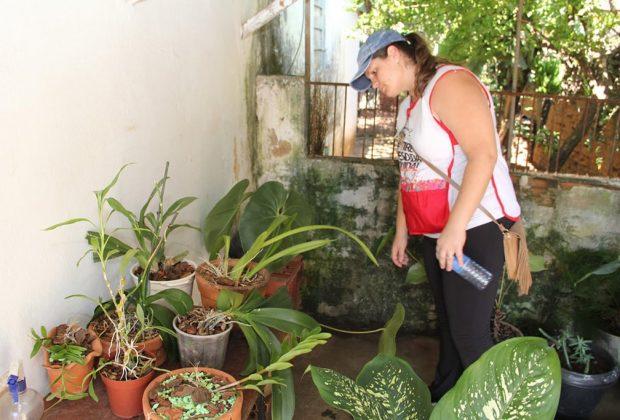 Mutirão da Prefeitura contra a dengue visitou mais de 1 mil imóveis em quatro bairros