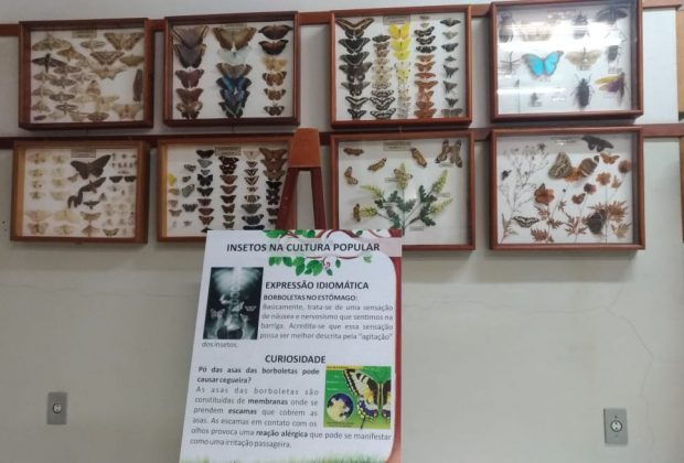 Museu de História Natural participa da 12ª Primavera dos Museus
