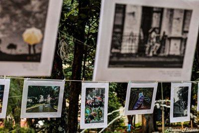 Amparo em Foco abre convocatória para duas exposições coletivas