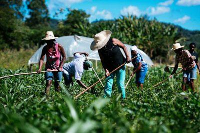 Prefeitura de Pedreira irá adquirir gêneros alimentícios provenientes da Agricultura Familiar