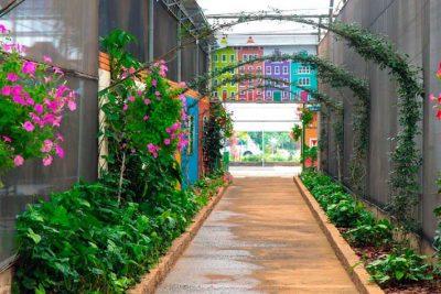 FAAGROH e empresa de flores e plantas abrem as portas para receber turistas, visitantes e profissionais