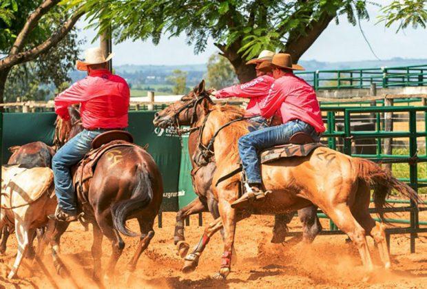 Holambra sedia etapa de competições equestres em junho