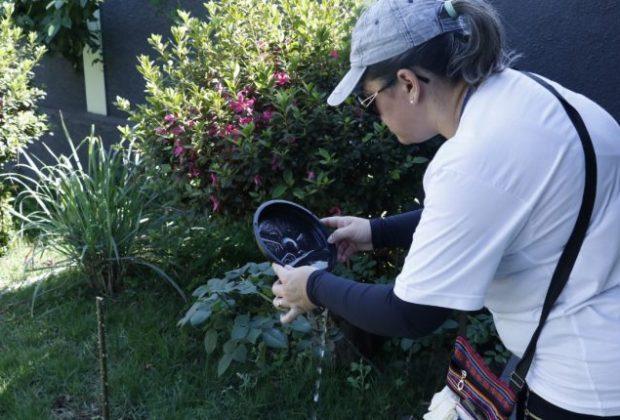 Mutirão contra a dengue é realizado nos bairros Miguel Martini e Vila Guilherme