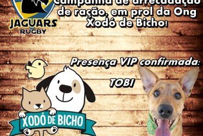 Jaguars Rugby arrecada ração para a ONG Xodó de Bicho no próximo jogo