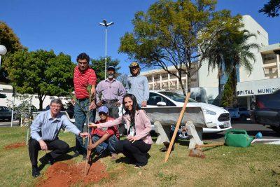 SAMA e Sicredi fazem plantio de árvores