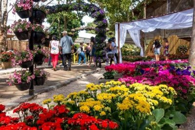 Morador de Holambra tem acesso gratuito à Expoflora