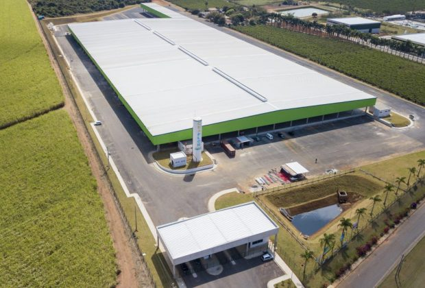 Ceaflor é o novo mercado de flores da região de Holambra
