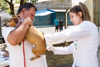 CAMPANHA DE VACINAÇÃO ANTIRRÁBICA VACINA QUASE 1500 ANIMAIS NO ÚLTIMO SÁBADO