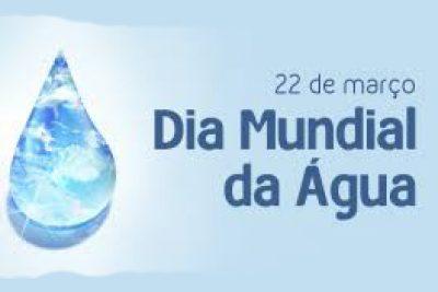 Dia Mundial da Água: Estamos fazendo a nossa parte?