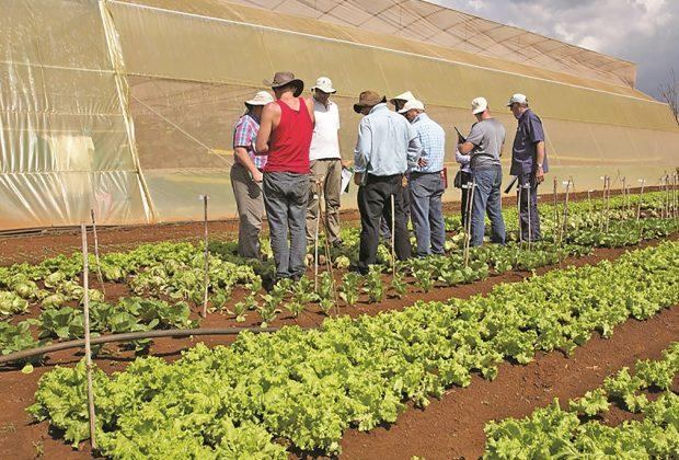 Mogi Mirim recebe empresa de sementes de alta tecnologia