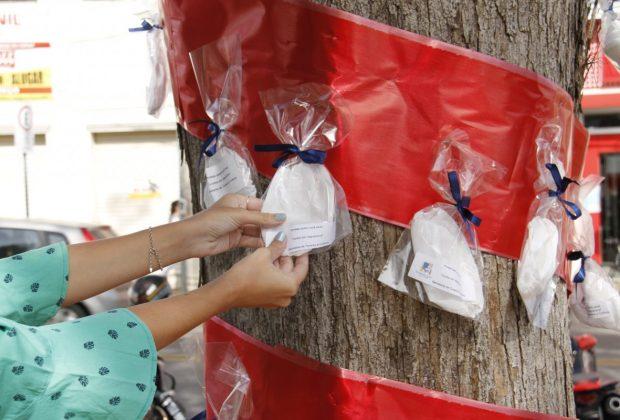 Árvores de máscaras distribuem proteção em Jaguariúna
