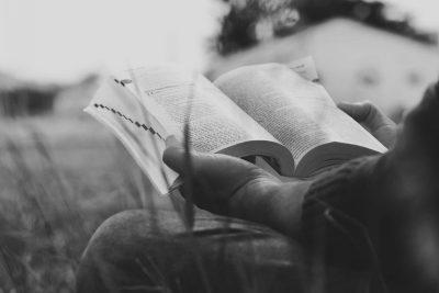 Persistir na divina missão além do fim – Paiva Netto
