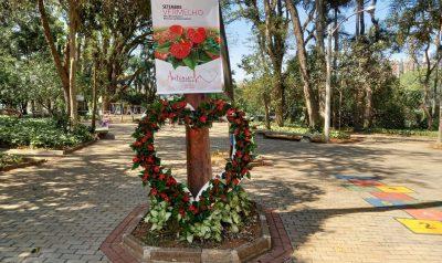 """Em parceria com o Veiling """"Setembro Vermelho"""" usa flores para chamar a atenção para doenças cardiovasculares"""