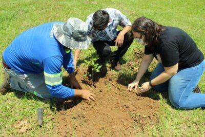 Equipe técnica de Responsabilidade Social participa de capacitação ambiental