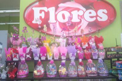 Produtores estão otimistas com a venda de flores e plantas para o Dia das Mães